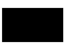 logo_topgun